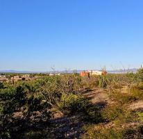 Foto de terreno habitacional en venta en  , centenario, la paz, baja california sur, 3969089 No. 01