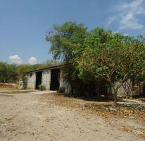 Foto de casa en venta en centro 123, tehuixtla, jojutla, morelos, 1846400 no 01