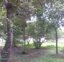 Foto de terreno habitacional en venta en centro 15, tlayacapan, tlayacapan, morelos, 3831925 No. 01