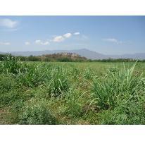 Foto de terreno habitacional en venta en centro 7, tehuixtla, jojutla, morelos, 2887049 No. 01