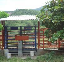 Foto de casa en venta en centro 8, tehuixtla, jojutla, morelos, 1846390 no 01