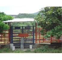 Foto de casa en venta en  8, tehuixtla, jojutla, morelos, 1846390 No. 01