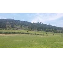 Foto de rancho en venta en  , centro, apan, hidalgo, 2634082 No. 01
