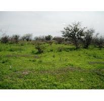 Foto de terreno habitacional en venta en  , centro, cuautla, morelos, 2736333 No. 01