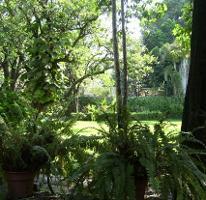 Foto de terreno habitacional en venta en  , centro, emiliano zapata, morelos, 2622045 No. 02