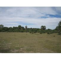 Foto de terreno habitacional en venta en  , centro, la paz, baja california sur, 1075901 No. 02