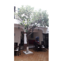 Foto de edificio en venta en  , centro, querétaro, querétaro, 2144578 No. 01
