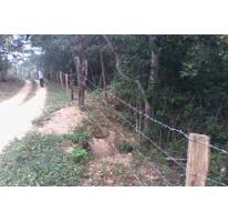Foto de terreno habitacional en venta en  , chacala, cabo corrientes, jalisco, 1706070 No. 01