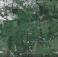 Foto de terreno habitacional en venta en  , chacamax, palenque, chiapas, 1877618 No. 01