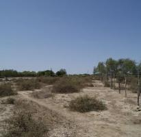 Foto de terreno habitacional en venta en  , chametla, la paz, baja california sur, 2251026 No. 01
