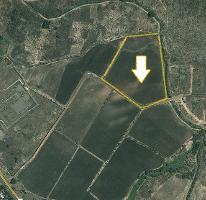 Foto de terreno comercial en venta en  , chaparaco, zamora, michoacán de ocampo, 2521948 No. 01