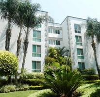 Foto de departamento en renta en  , chapultepec, cuernavaca, morelos, 3437497 No. 01
