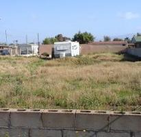 Foto de terreno habitacional en venta en  , chapultepec, ensenada, baja california, 3199500 No. 01