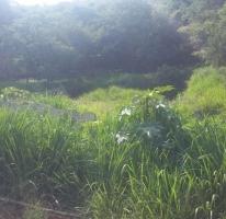 Foto de terreno habitacional en venta en chapultepec, las cañadas, zapopan, jalisco, 587378 no 01