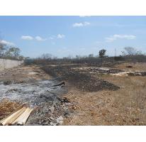 Foto de terreno habitacional en venta en  , chichi suárez, mérida, yucatán, 1865404 No. 01