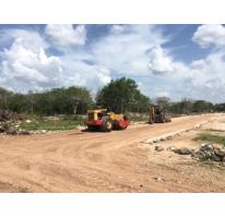 Foto de terreno habitacional en venta en  , chichi suárez, mérida, yucatán, 2035916 No. 01