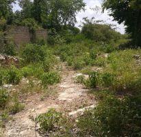 Foto de terreno habitacional en venta en, chichi suárez, mérida, yucatán, 2092004 no 01