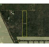 Foto de terreno habitacional en venta en  , chichi suárez, mérida, yucatán, 2150134 No. 01