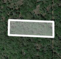 Foto de terreno habitacional en venta en  , chichi suárez, mérida, yucatán, 2285130 No. 02