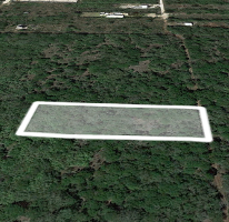 Foto de terreno habitacional en venta en  , chichi suárez, mérida, yucatán, 3686703 No. 01