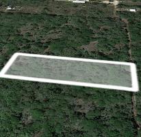 Foto de terreno habitacional en venta en  , chichi suárez, mérida, yucatán, 3687498 No. 01