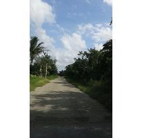 Foto de terreno habitacional en venta en, chicxulub, chicxulub pueblo, yucatán, 1577772 no 01