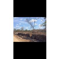 Foto de terreno habitacional en venta en, chicxulub, chicxulub pueblo, yucatán, 1790068 no 01