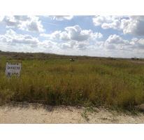 Foto de terreno habitacional en venta en  , chicxulub, chicxulub pueblo, yucatán, 2817552 No. 01