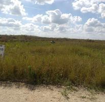Foto de terreno habitacional en venta en  , chicxulub, chicxulub pueblo, yucatán, 2824809 No. 01