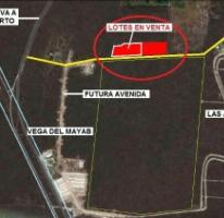 Foto de terreno habitacional en venta en  , chicxulub, chicxulub pueblo, yucatán, 2905650 No. 01