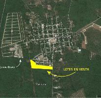 Foto de terreno habitacional en venta en  , chicxulub, chicxulub pueblo, yucatán, 3627760 No. 01