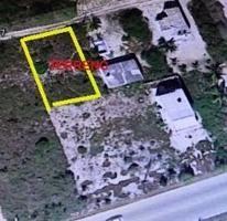 Foto de terreno habitacional en venta en  , chicxulub, chicxulub pueblo, yucatán, 3707252 No. 01