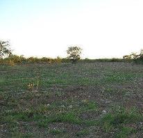 Foto de terreno habitacional en venta en  , chicxulub, chicxulub pueblo, yucatán, 4221474 No. 01