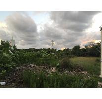 Foto de terreno habitacional en venta en  , chicxulub puerto, progreso, yucatán, 2272725 No. 01