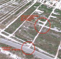 Foto de terreno habitacional en venta en  , chicxulub puerto, progreso, yucatán, 2596781 No. 01