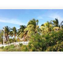 Foto de terreno habitacional en venta en  , chicxulub puerto, progreso, yucatán, 2786974 No. 01