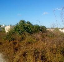Foto de terreno habitacional en venta en  , chicxulub puerto, progreso, yucatán, 3283829 No. 01