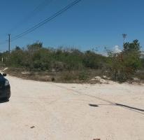 Foto de terreno habitacional en venta en  , chicxulub puerto, progreso, yucatán, 3490108 No. 01