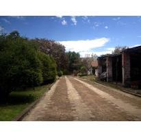 Foto de terreno habitacional en venta en  , chilchota centro, chilchota, michoacán de ocampo, 2599488 No. 01