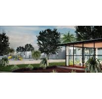 Foto de casa en venta en  , cholul, mérida, yucatán, 1109653 No. 02