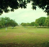 Foto de terreno habitacional en venta en, cholul, mérida, yucatán, 1122205 no 01