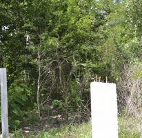 Foto de terreno habitacional en venta en, cholul, mérida, yucatán, 1459361 no 01