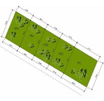 Foto de terreno habitacional en venta en  , cholul, mérida, yucatán, 2603076 No. 01