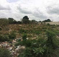 Foto de terreno habitacional en venta en  , cholul, mérida, yucatán, 3389541 No. 01