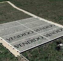 Foto de terreno habitacional en venta en  , cholul, mérida, yucatán, 3887725 No. 01