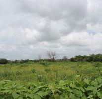 Foto de terreno habitacional en venta en  , cholul, mérida, yucatán, 3927775 No. 01