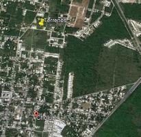 Foto de terreno habitacional en venta en  , cholul, mérida, yucatán, 4222923 No. 01