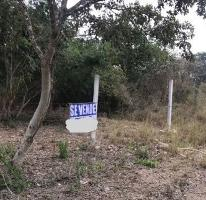 Foto de terreno habitacional en venta en  , cholul, mérida, yucatán, 4370517 No. 01