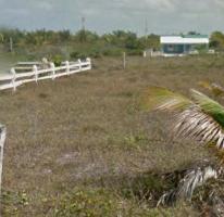 Foto de terreno habitacional en venta en  , cholul, mérida, yucatán, 0 No. 04