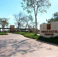 Foto de terreno habitacional en venta en  , cholul, mérida, yucatán, 0 No. 10